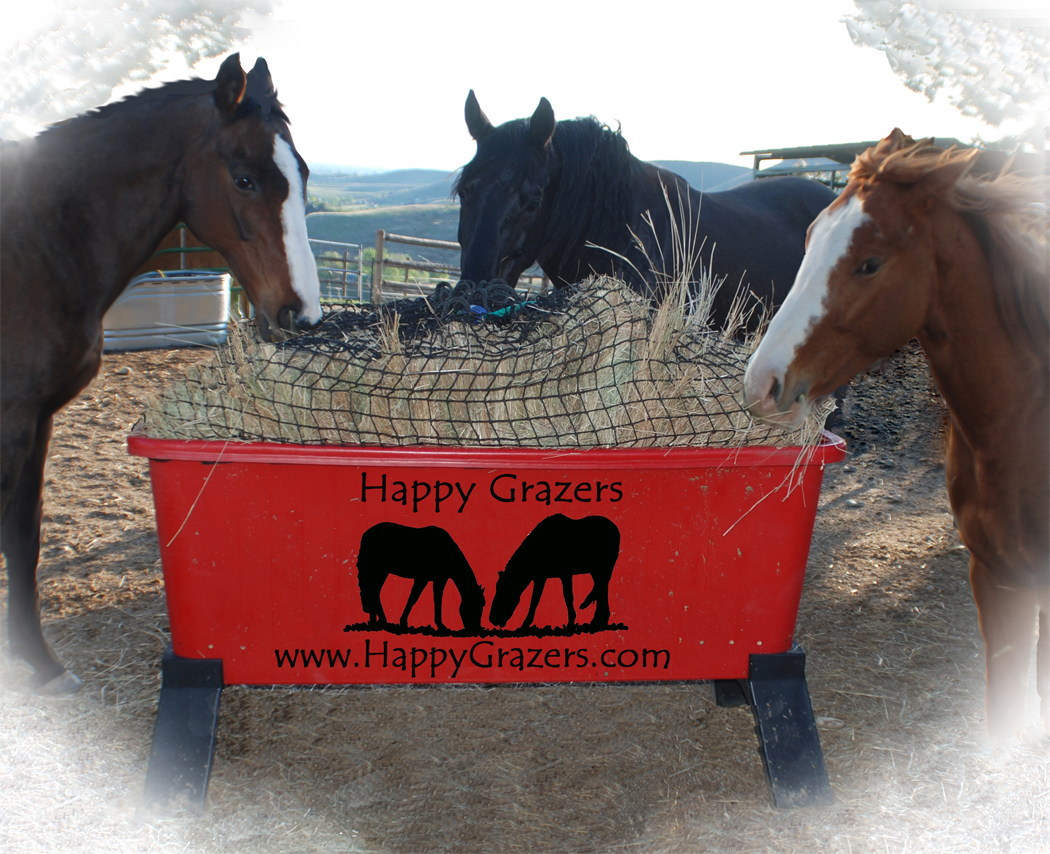 feeder holds slow hay flakes that nag bag hanging pin of feeders